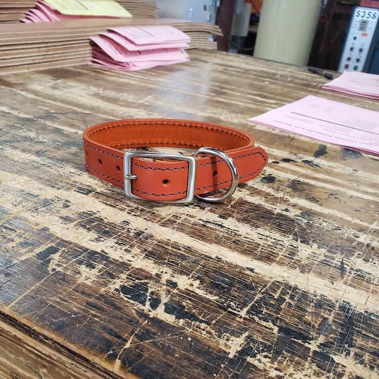 Custom Dog Collar by Pioneer
